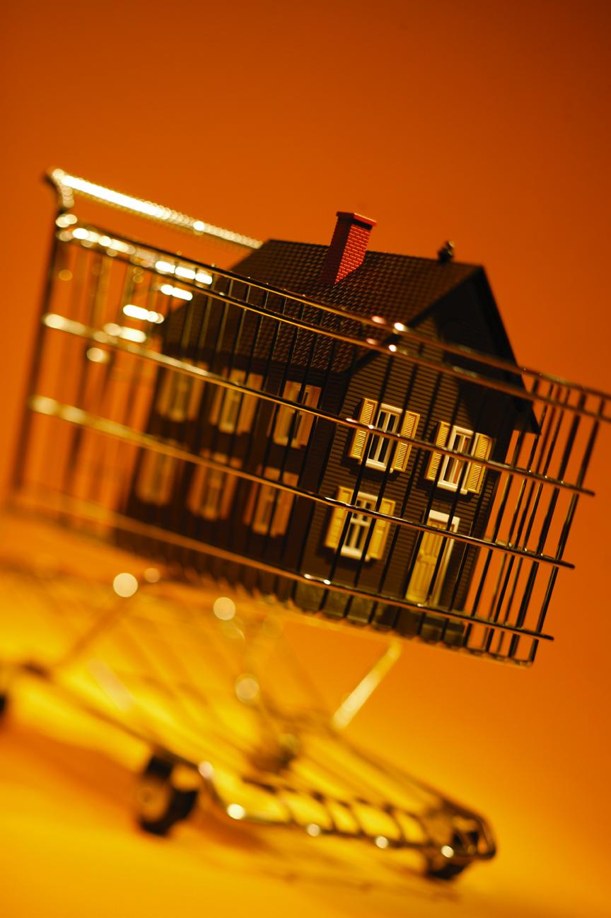 HouseShopping.jpg